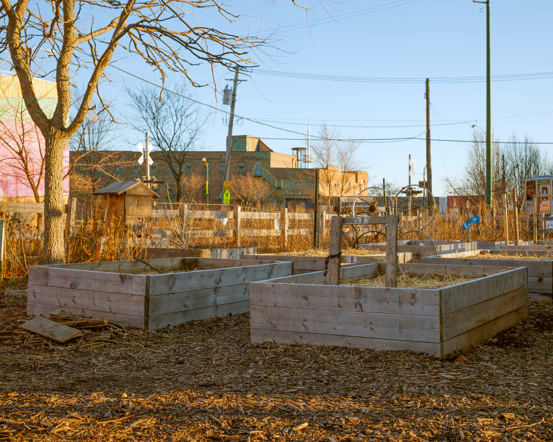 Pilsen Garden looks to grow beyond stalled plans for the El Paseo ...