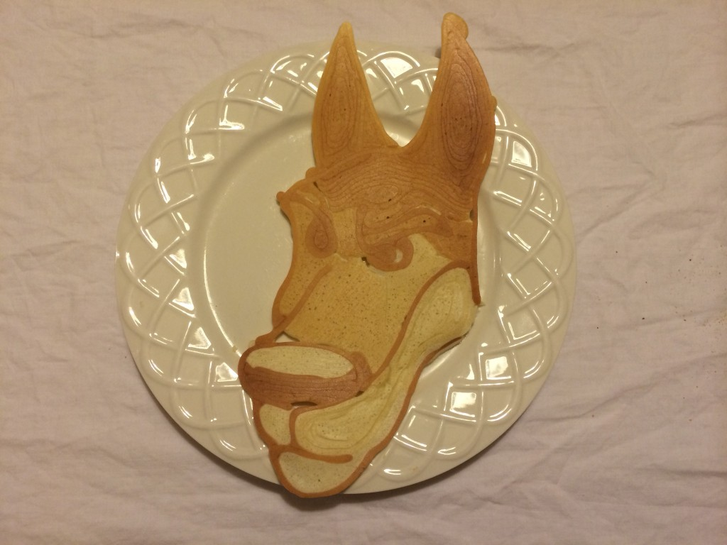 Completed PancakeBot pancake