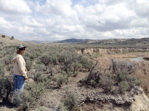 Carol Evans has made cooperative grazing agreements a focal part of her stream restoration work for the BLM in Nevada's Elko District. (Photo by Bryce Gray)