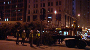 Workers are working to untie the tree. (By Jasmine Cen/Medill)