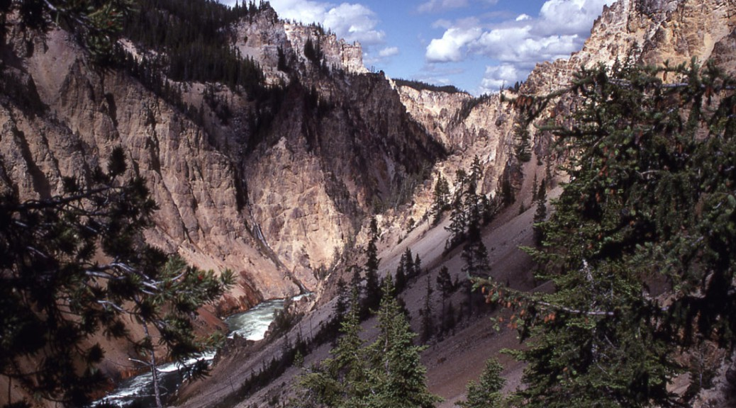 The Yellowstone River flows through the Grand Canyon of the Yellowstone in Yellowstone National Park. Yellowstone is one of many national parks that is threatened due to climate change. (NPS)