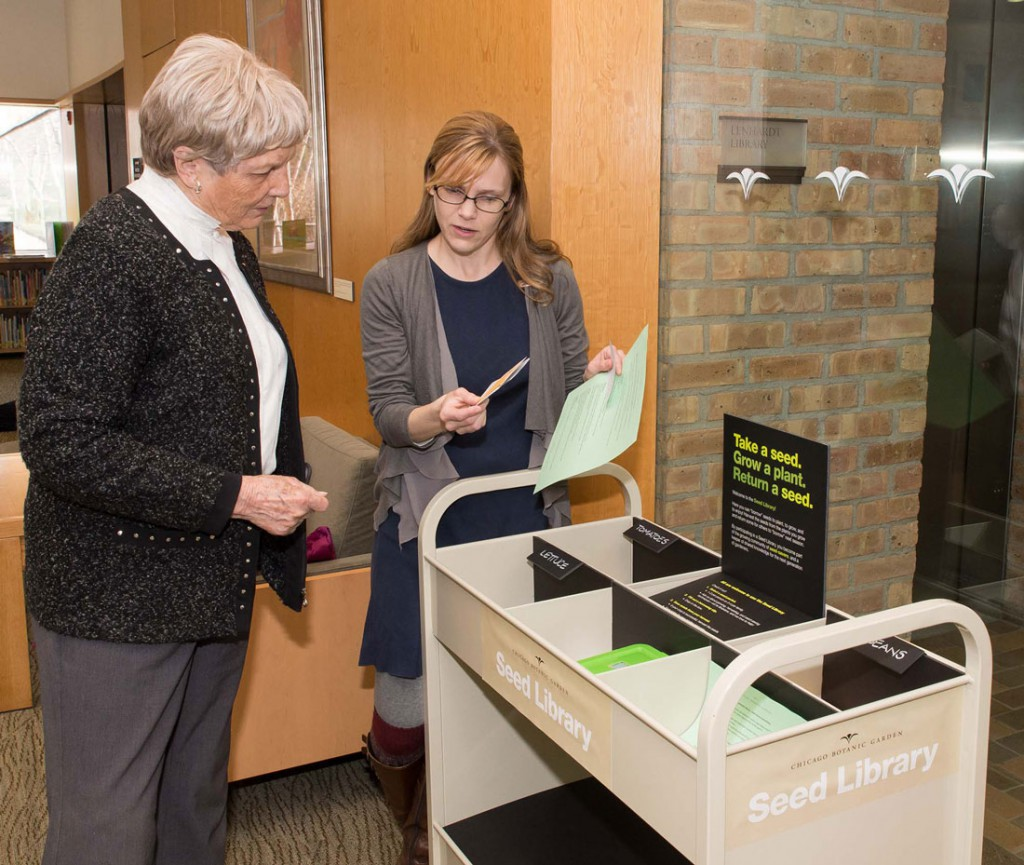 Visitors to the Chicago Botanic Garden's seed library read about the seed saving process. (Robin J. Carlson/Chicago Botanic Garden)