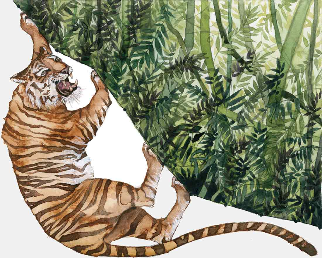 Tigers are an endangered species due to humans' negative impact on ecosystems.