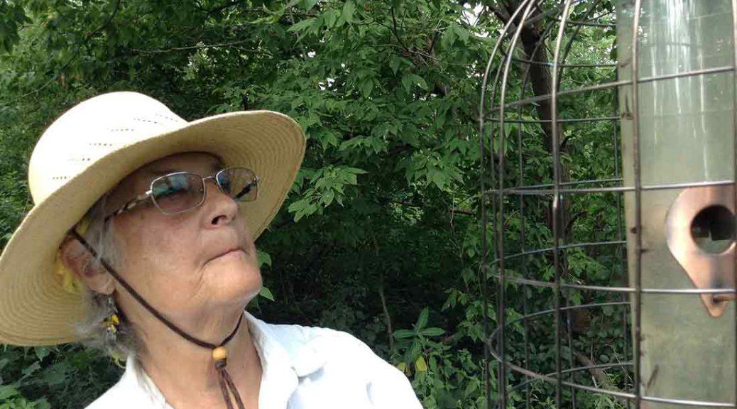 Carolyn Marsh fills the bird feeders in the sanctuary in Hammond, Indiana